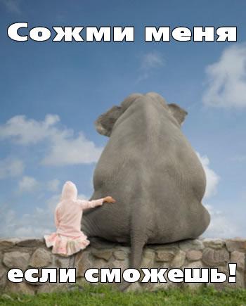 Троянский слон